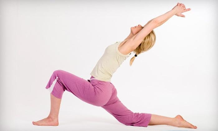 The Yoga Institute of Broward - Pine Lake: Pack of 5 or 10 Classes at The Yoga Institute of Broward in Cooper City