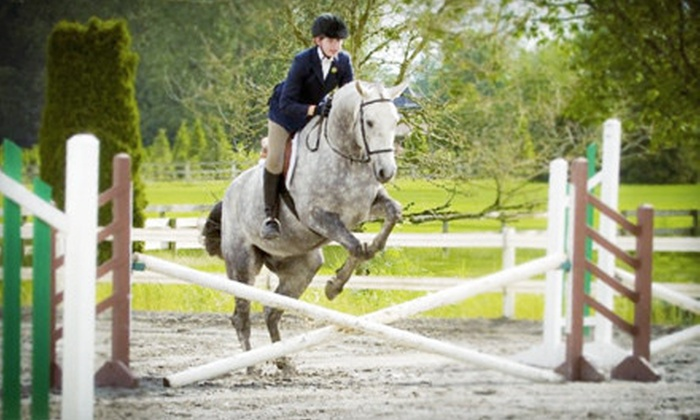 A&T Equestrian - South Surrey: One-Week Preschool Horse Camp or Four Riding Lessons at A&T Equestrian (Up to 57% Off)