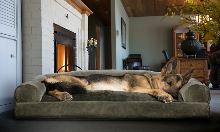 Phenomenal Up To 77 Off On Sofa Style Pet Bed For Dogs Groupon Goods Short Links Chair Design For Home Short Linksinfo
