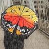 SuckUK Butterfly Umbrella