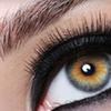 60% Off Eyelash Extensions in Swampscott