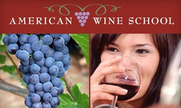 American Wine School - Beachwood: $22 For an Introductory Wine Class at American Wine School ($45 Value)