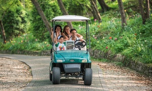 Parco Giardino Sigurtà: Pacchetto speciale Marzo con 2 ingressi al Parco Sigurtà più un'ora di utilizzo di golf cart a noleggio (sconto 50%)