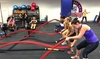 Up to 70% Off Training at Zoo Health Club Elite