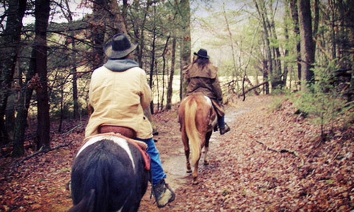 Five Oaks Riding Stables - Sevierville: $29 for a 60-Minute Trail Ride for Two from Five Oaks Riding Stables in Sevierville ($59.98 Value)
