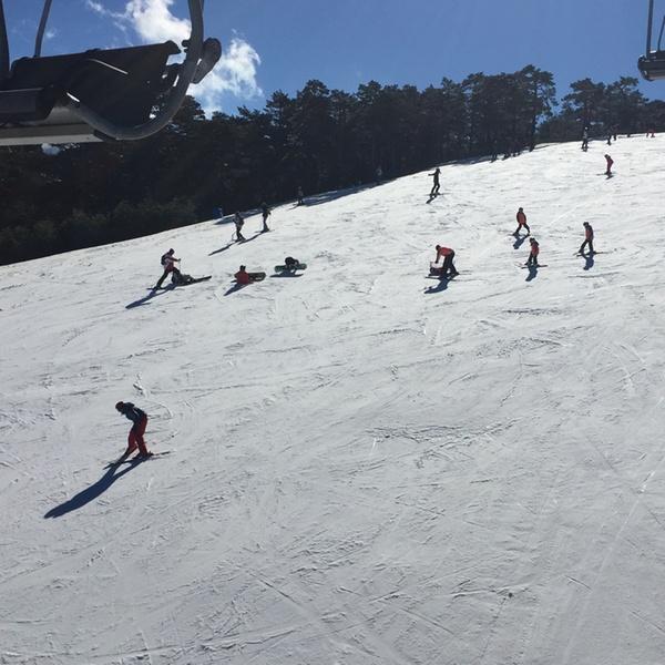 Estupendo estación de esquí//portátil//coche//Esquí//Snowboard//viajes//Equipaje
