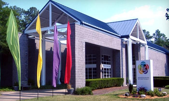 Peninsula Fine Arts Center - Newport News : One-Year Family Membership or One-Year Individual Membership to the Peninsula Fine Arts Center in Newport News