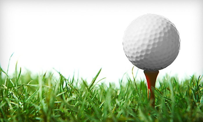3D Golf Instruction - Multiple Locations: $30 for an Intro Golf Lesson and Evaluation with Biomechanics Swing Analysis at 3D Golf Instruction in Cary ($125 Value)