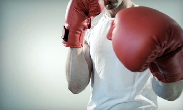 XSI Factory - Lehi: One Month of Boxing, MMA & Hapkido and Gym Access at XSI Factory in Lehi (Up to $150 Value)