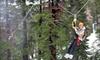 Half Off Zipline Experience for Two in Kirkwood