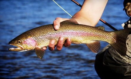 Intro to Fly-Fishing or Fly-Tying Class (a $60 value) - Nomad Anglers in Okemos