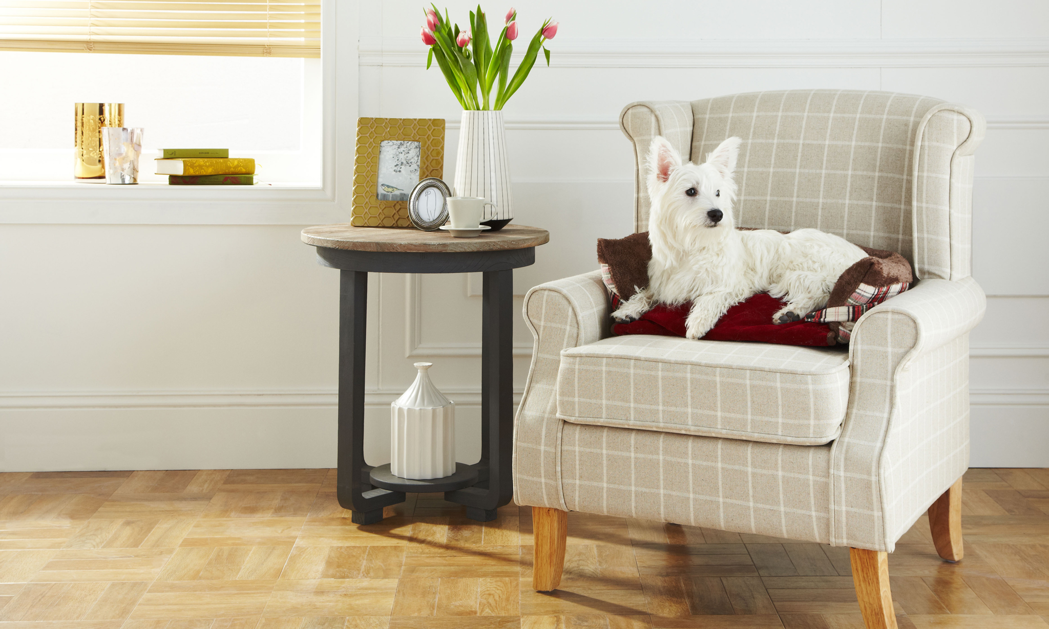 From £11.99  For Bunty Stirling Tartan Dog Sofa Bed in Choice of Colour and Size