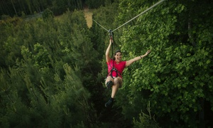 Go Ape – Up to 20% Off Treetop Adventure Course and Zip Line at Go Ape, plus 6.0% Cash Back from Ebates.