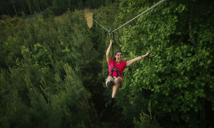 Treetop Adventure for One, Two, or Four Adults at Go Ape (Up to 15% Off)