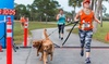 Justin Bartlett Animal Rescue - Lake Worth: Admission for One or Two to Four Paws Run on March 18, 2017 at Justin Bartlett Animal Rescue (Up to 56% Off)