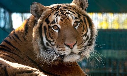 1 accès au parc animalier et parc aventure du Monde Sauvagepour 1 personne à 15,50 €