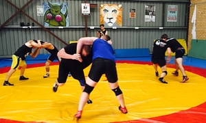 Gladiator Wrestling: Unlimited Wrestling/MMA Classes for One ($15), Two ($29) or Three Months ($39) at Gladiator Wrestling (Up to $420 Value)