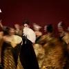 La Traviata: Tickets from $46