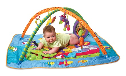 Tiny Love Total Playground Gym With Free Delivery