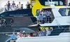 Volvo Ocean Race - Park West: $350 for a VIP Spectator-Yacht Charter to Volvo Ocean Race International Sailing Race on May 19 or 20 ($700 Value)
