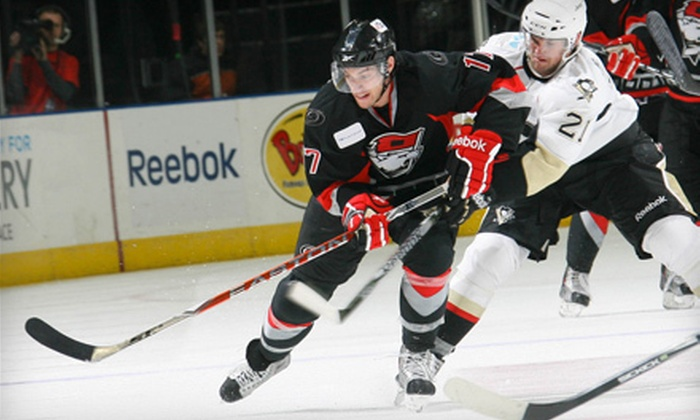 Charlotte Checkers - First Ward: One Ticket to See Charlotte Checkers Hockey at Time Warner Cable Arena on April 7 at Noon. Three Options Available.