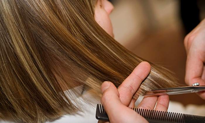 Hair by Flora - Burbank: Haircut, Blow-Dry, and Style, or Haircut, Blow-Dry, and Style with Partial Highlights at Hair by Flora in Burbank (Up to 56% Off)