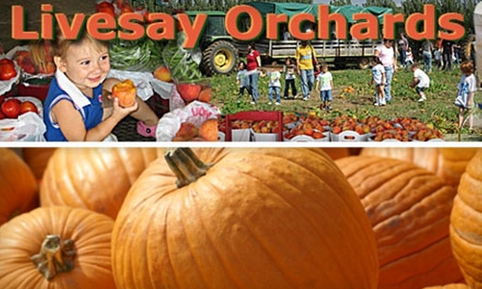 Livesay Orchards - South Wagoner: $4 for One Weekend Admission and $5 Worth of Farm-Market Goods at Livesay Orchards ($8 Value)