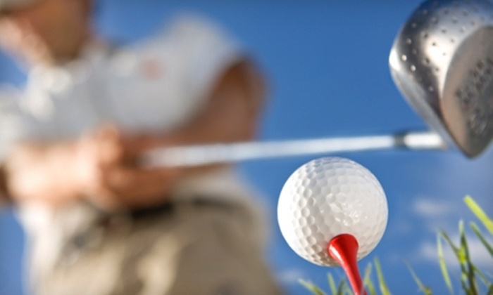 Forest Preserve Golf - Multiple Locations: $149 for 10 Rounds of Golf, 1 Round at Each Course, at Forest Preserve Golf (Up to $309 Value)