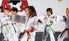 54% Off Martial Arts / Karate / MMA