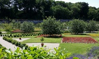 Colclough Walled Garden Entry for Two or Four (Up to 55% Off)