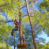 Up to 51% Off Adventure Course & Zipline at Elevate Red Creek