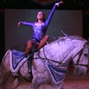 The Dancing Horses – Up to 52% Off Performance