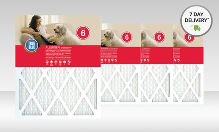 True Blue Allergen and Pet Protection Air Filter Four-Pack. Multiple Sizes Available. Free Returns.