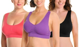 ba44f3284b19c Angelina Wire-Free Seamless Bras in Regular and Plus Sizes (6-Pack)