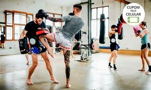 Arena School Fight: 1, 2 ou 3 meses de luta experimental (muay thai ou jiu-jitsu) na Arena School Fight – Perdizes