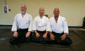 Kimeshinkan Aikido Dojo: $38 for $75 Worth of Martial-Arts Lessons — Kimeshinkan Aikido Dojo