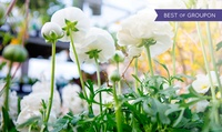 Norfolk Garden Show: Entry for Two or Four on 26-28 August at Norfolk Showground (Up to 55% Off)