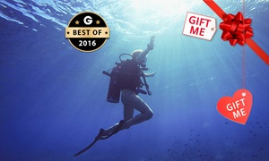 Kiwi Divers: Open Water SCUBA Dive Course for One ($339) or Two People ($669) at Kiwi Divers (Up to $1,100 Value)