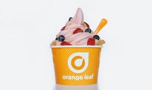 Up to 40% Off Frozen Yogurt at Orange Leaf  at Orange Leaf , plus 6.0% Cash Back from Ebates.