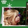 Holiday Photo-Card Package or Portrait Package