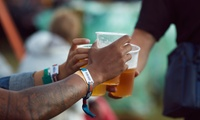 General Tickets from R85 for One to the Stellenbosch Craft Beer Festival
