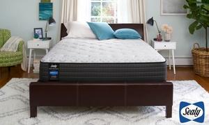 Sealy 12'' Cushion Firm or Plush Mattress Set