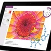 """Microsoft Surface 3 10.8"""" Tablet with Intel Quad Core Processor"""