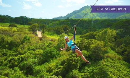 Skyline Kauai Zipline Tour for One, Two, or Four at Skyline Eco-Adventures (23% Off)