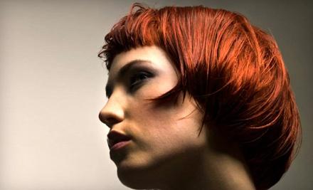 Haircare Package (a $164 value) - The Loft Hair Studio in Centennial