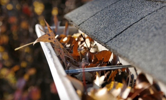 Duplessis Works - Baton Rouge: Gutter Cleaning for Up to 125 or 150 Linear Feet from Duplessis Works (51% Off)