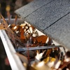 51% Off Gutter Cleaning from Duplessis Works