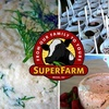 "Half Off ""Moo-velous"" Package at Superstition Farm"