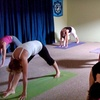 60% Off Yoga Classes in Winter Garden