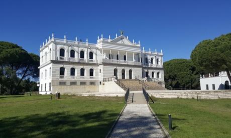 Visita guiada al Parque Nacional de Doñana para adultos y niños desde 19 € con Adivine Tours and Wines
